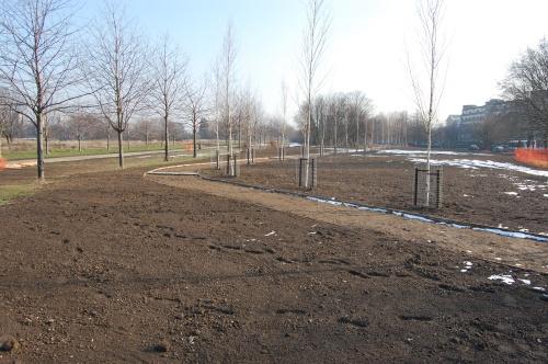 04 - Burgess Park Ecological Gardens