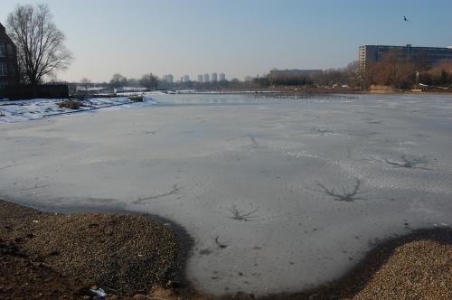 08 - Burgess Park Lake looking west (11/02/2012)